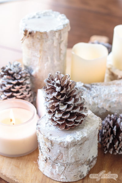 Snowy Birch Logs Winter Centerpiece