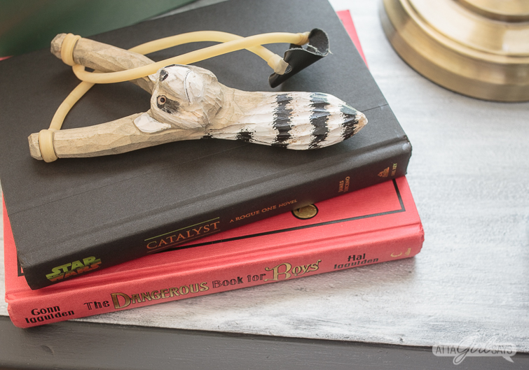 stack of books and a raccoon slingshot on a metallic zinc table top