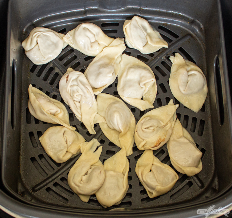 pork wontons in an air fryer