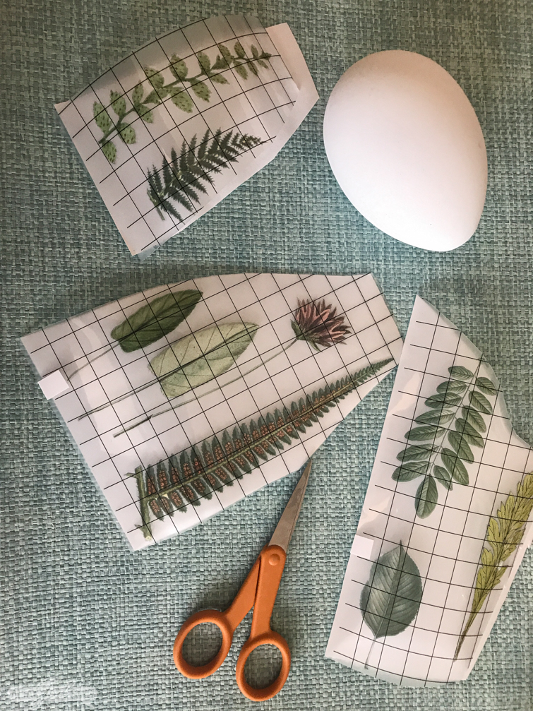 vintage botanical decorative transfers and an Easter egg
