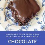 gooey chocolate brownie with homemade chocolate icing