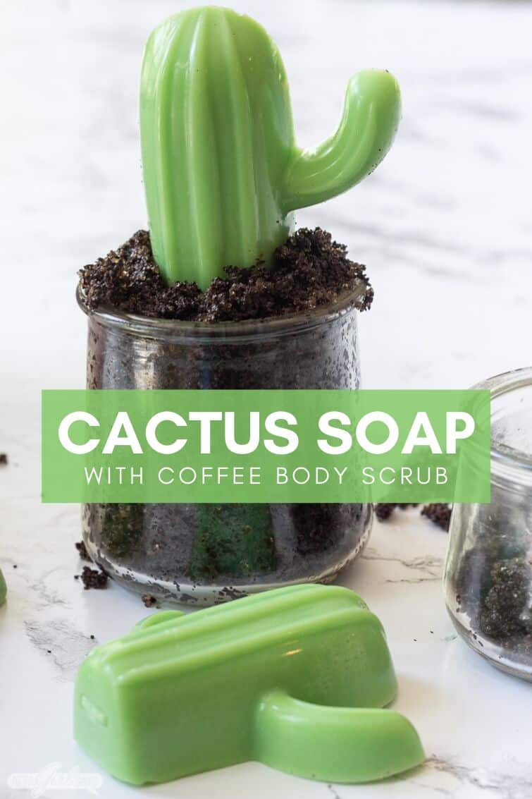 homemade cactus soap in glass terrarium jars filled with coffee body scrub