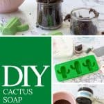 collage showing how to make DIY cactus soap