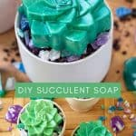 collage photo of succulent shaped soaps in ceramic pots