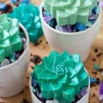 homemade succulent soap bars in planters with small crystal soap