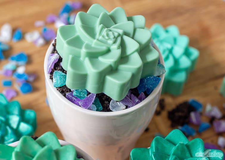 succulent shaped soap in a pot