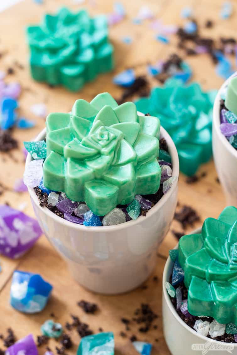 succulent shaped soap in a pot