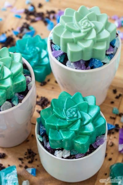 succulent shaped soaps in a ceramic pots