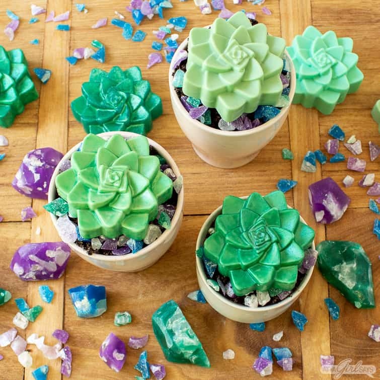 succulent soap bars in ceramic pots with crystal soap rocks surrounding them