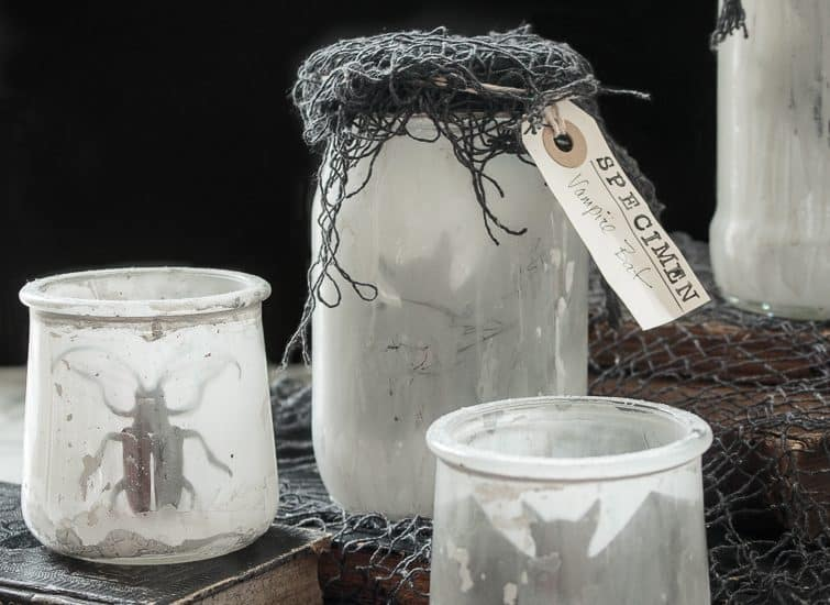 backlit specimen jars with bugs and bats in them