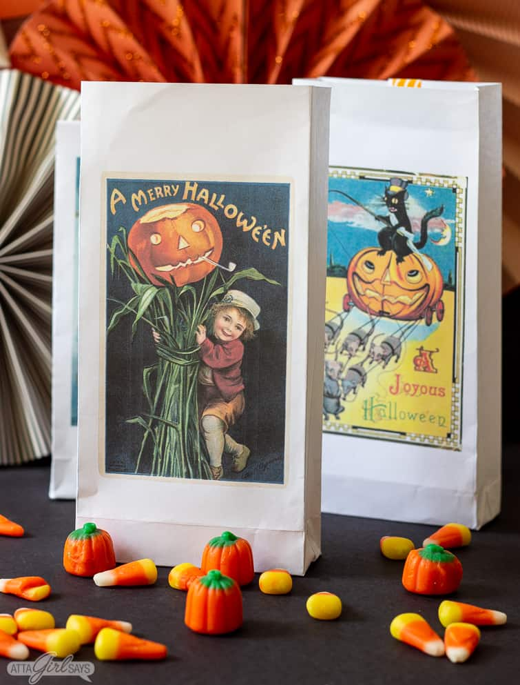 two Halloween treat bags surrounded by candy