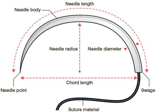 Anatomy of modern suture needle