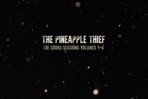 the pineapple thief 2