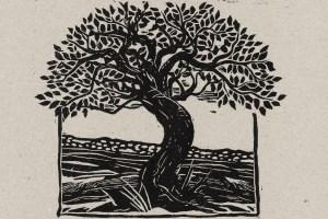 sam kelly the wishing tree