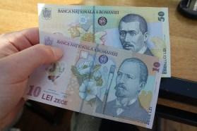 Romanian leu (1€ = 4,5 lei). These bills felt like plastic in your hands!
