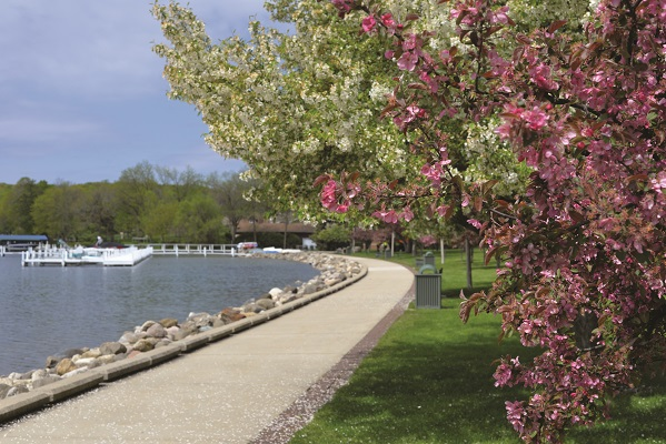 A sure sign of spring – the lilac trees in full bloom along the Shore Path adjacent to Lake Geneva's Library Park.