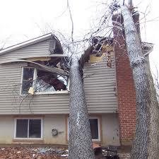 Tree thru the house