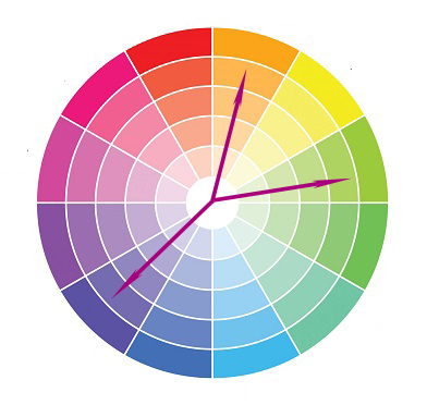 Split Complementary Colors Are A Combination Between Two Analog And The Color Of