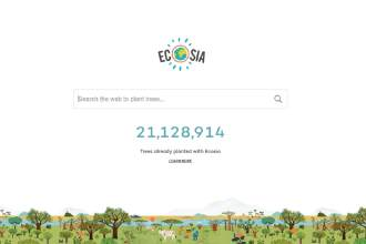 search engine that plants trees
