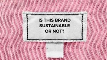 How To Avoid Greenwashing