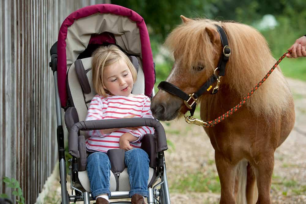 Kimba Neo Pferd Spaziergang