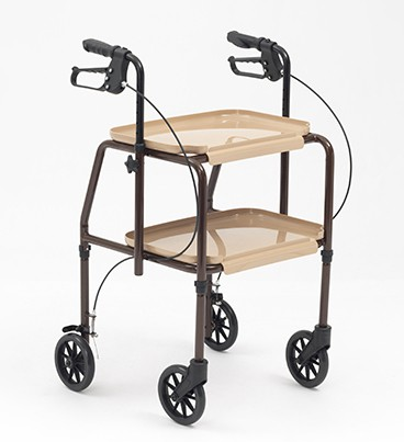 Combination Trolley Walker_17241