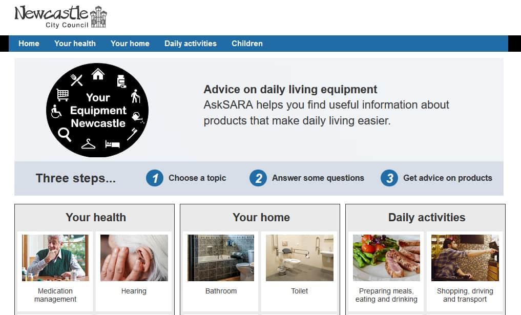 DLF AskSARA tool image