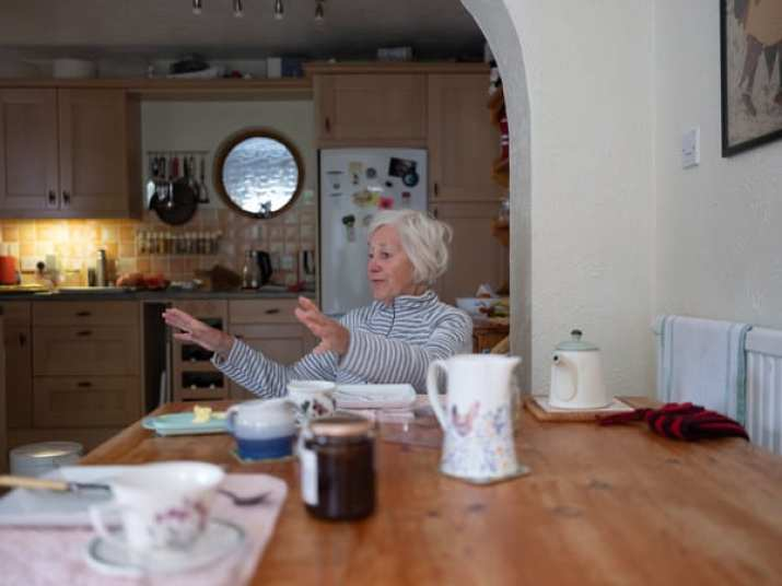 Elderly lady at home image