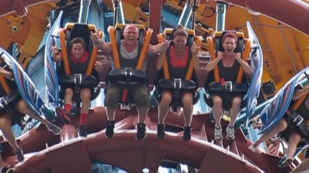 Falcon's Fury Busch Gardens Tampa Falcon Face #FalconFace