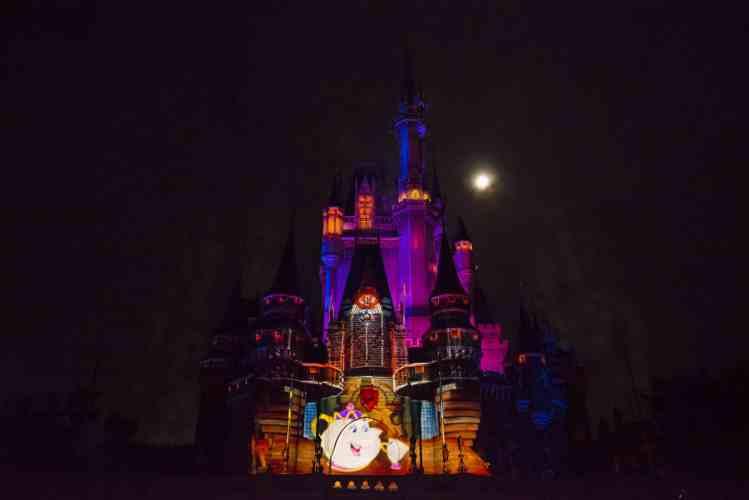 castle projection show