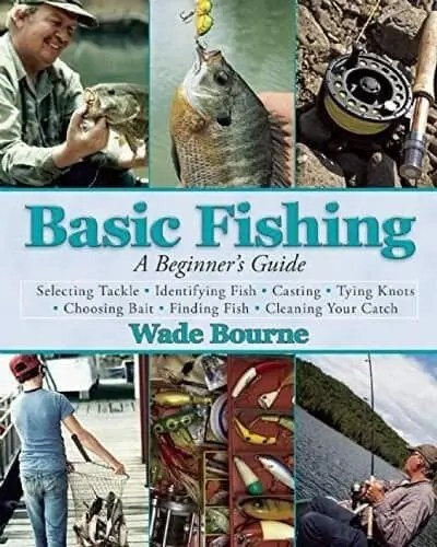 Basic Fishing A Beginners Guide