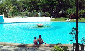 Water Garden Forest Park