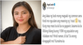 Angel Locsin Responded to Netizen who Tried To School Her About Mass Testing