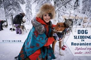 狗拉雪橇穿梭樹冰中 聖誕老人村不只馴鹿替你拉雪橇 芬蘭羅凡聶米-零下30度玩翻北極圈