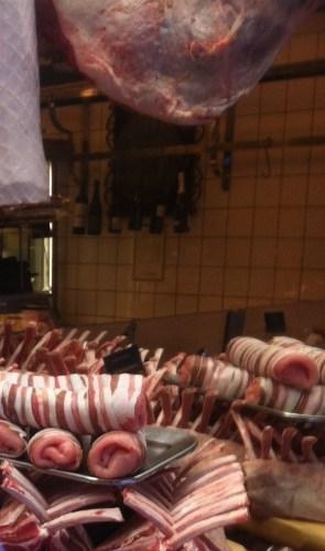 för köttätare
