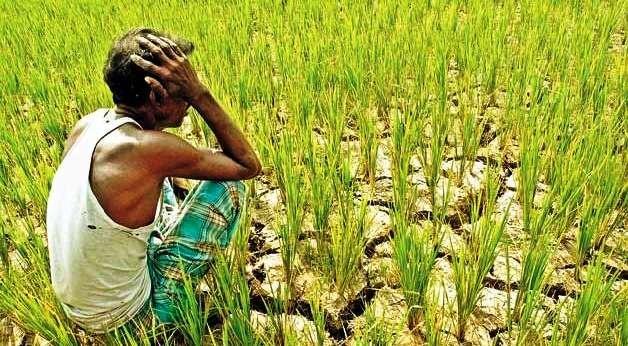 किसानों की दशा दिशा