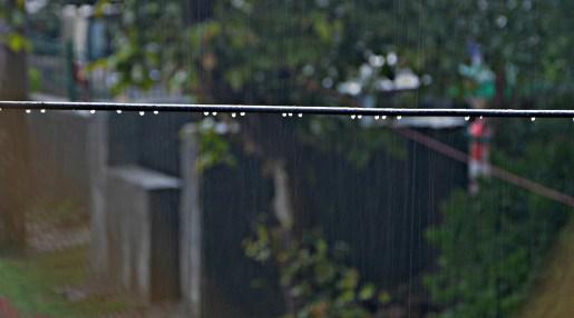 Rain Drop - Pearls