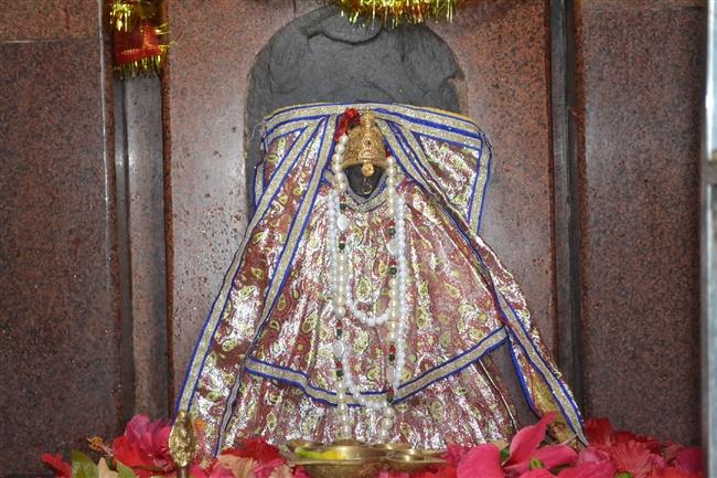 maa durga idol in sanhouli khagaria