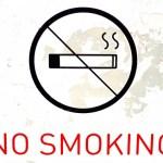 か弱き心で禁煙を目指して。IQOSとPloomTech①
