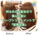明るめの白髪染めで傷んだ髪にハーブトリートメントで『髪質改善』大阪千林守口