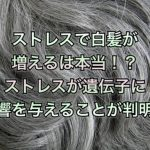 ストレスで白髪が増えるは本当!?ストレスが遺伝子に影響を与えることが判明!