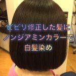 ビビリ修正した髪にノンジアミンカラーで白髪染め《大阪守口美容室》