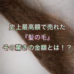 史上最高額で売れた『髪の毛』その驚きの金額とは!?