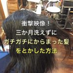 衝撃映像!三か月洗えずにガチガチにからまった髪の毛の塊をとかした方法