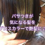 パサつきが気になる髪をグロスカラーで艶髪に♪《大阪千林美容室》