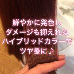 鮮やかに発色しダメージも抑えれるハイブリッドカラーでツヤ髪に♪