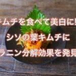 キムチを食べて美白に!?シソの葉キムチにメラニン分解効果を発見!