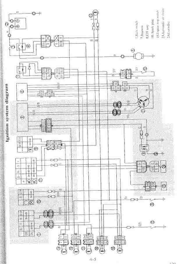 puma 300 wiring diagram  96 mustang engine diagram  bege
