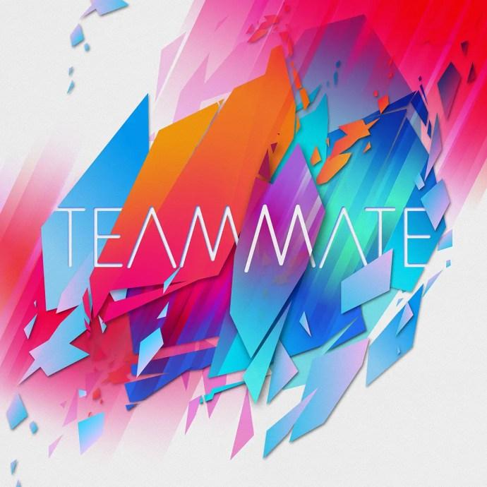 TeamMate - TeamMate