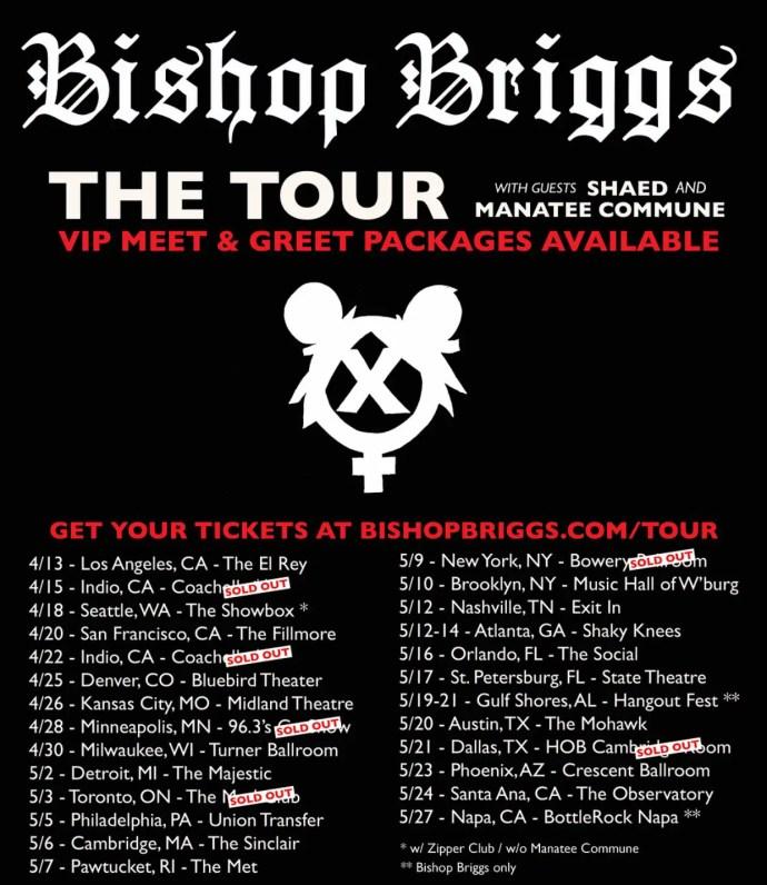 Bishop Briggs 2017 tour poster